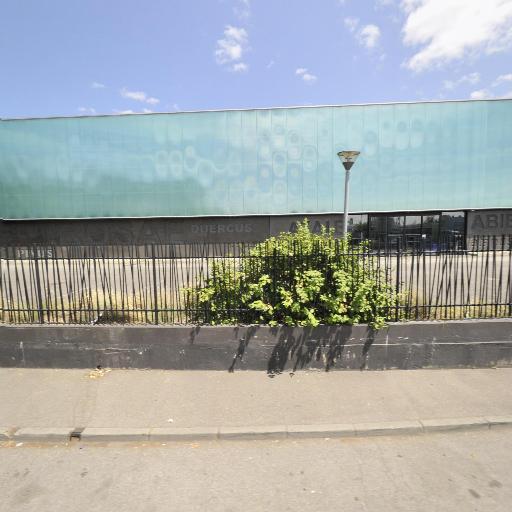 Batuel Plantes - Commerce en gros de fleurs et plantes naturelles - Toulouse