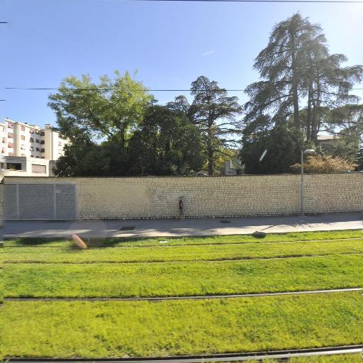 Trevillot Vincent - Médecin ORL - Montpellier